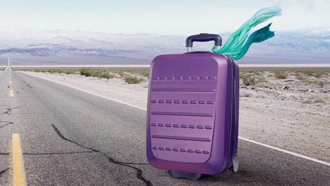 reizen reisbagage