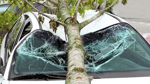 Wat met je autoverzekering bij stormschade?