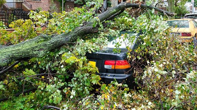wat te doen bij schade aan auto door storm