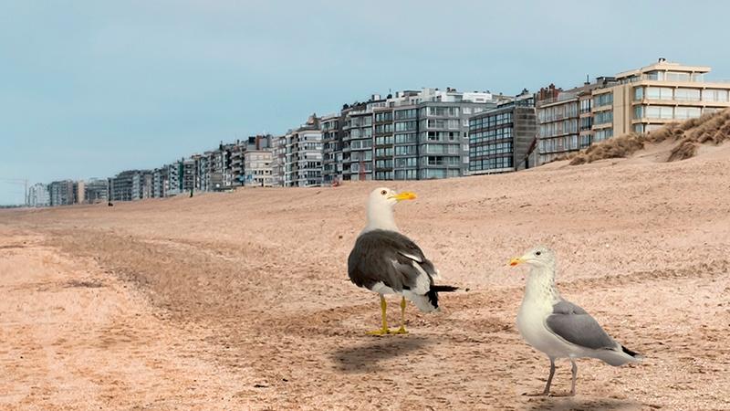 Appartementsblokken aan de kust