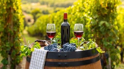 Nieuwe wijnresultaten