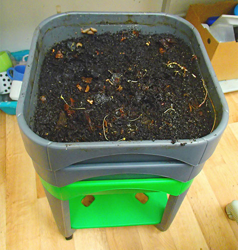compost vermicompostage